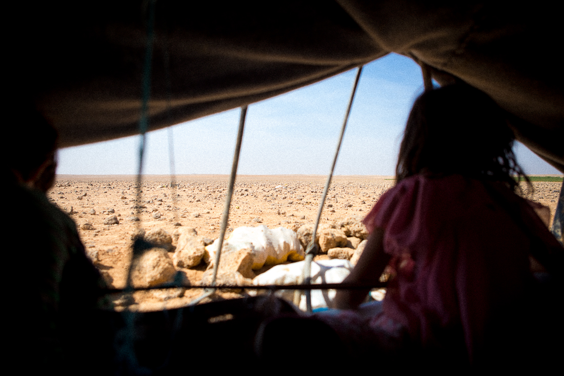 Bedouins: the forgotten victims of the Syrian crisis