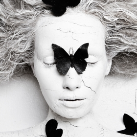 Metamorphosis. Black Butterfly
